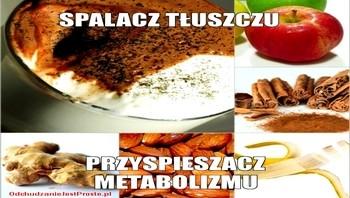 OdchudzanieJestProste.pl-Spalacz-Tłuszczu-Przyspieszacz-Metabolizmu350x200
