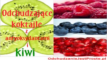 odchudzaniejestproste.pl-odchudzajace-antyoksydacyjne-koktajle-kiwi