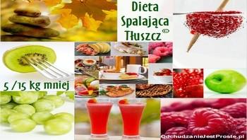 dieta spalająca tłuszcz 5-15 kg, czyli co zrobić żeby szybko schudnąć, jak schudnąć 5 - 15 kg